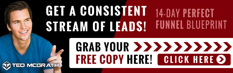 Get A consistent Stream of Leads! 14-Day PERFECT FUNNEL Blueprint. Grab Your FREE Copy Here